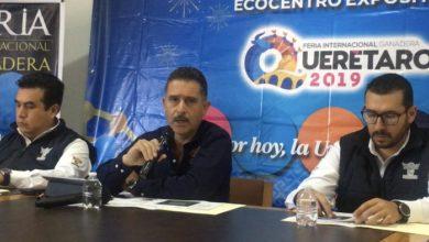 Photo of Asignará Gobierno 10 millones de pesos a programa de concurrencia en 2020: UGR