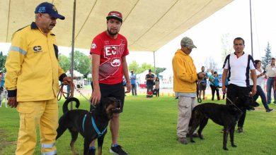 Photo of Este domingo será el Primer Festival Canino