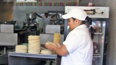 Photo of En Querétaro, el kilo de tortilla debe estar entre 16 y 16.90 pesos: Sedea