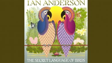 Photo of The Secret Language of Birds de Ian Anderson, a 20 años.