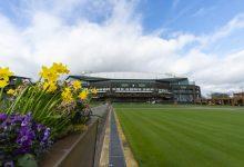 Photo of Cancelan torneo de Wimbledon de este año